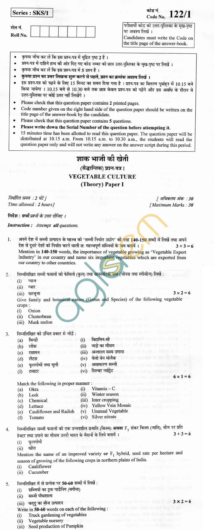 CBSE Board Exam 2013 Class XII Question Paper -Vegetable Culture (Paper I)
