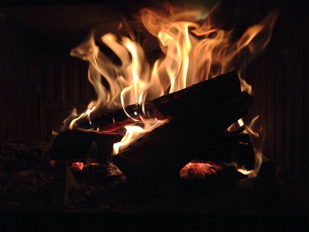 Fuego [47/365]