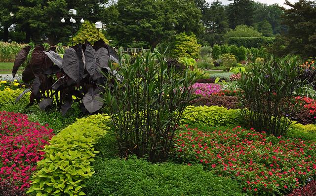Idea Garden (3)