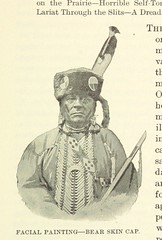"""British Library digitised image from page 317 of """"Twenty Years among our hostile Indians ... Fully illustrated from original photographs"""""""