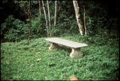 Lonely Praying Bench