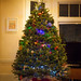 Biddulph-Waldman Christmas Tree 2013 by Matt Biddulph