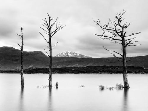 landscape scotland unitedkingdom 2014 lochassynt inverpolly canisp