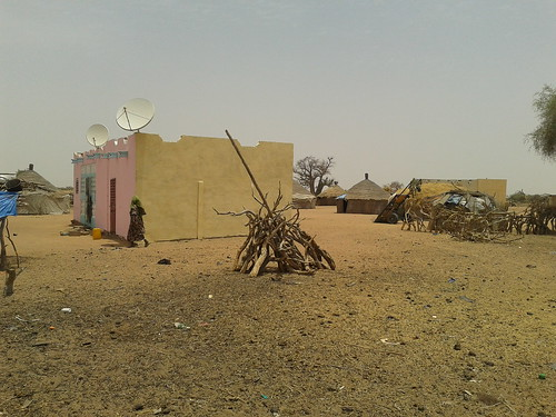 Concrete and brick houses replace branch sheds as pastoralist herders settle part of their dairy herd to supply a dairy plant in Richard Toll, Senegal