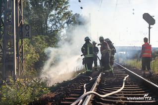 Feuer Bahndamm Kostheim 10.07.15