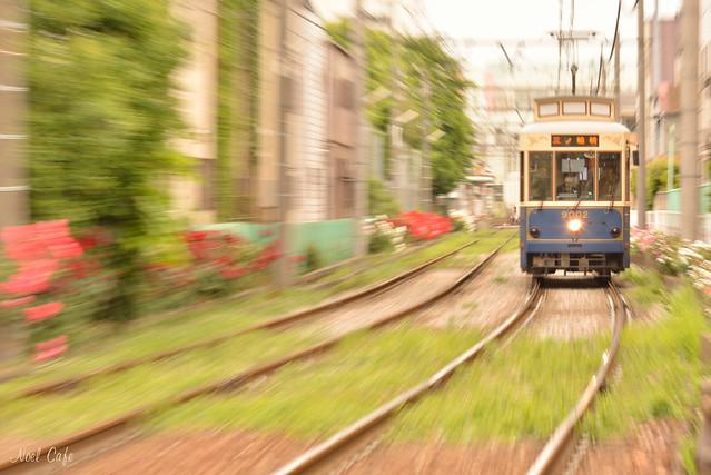 レトロ列車が行く! 3