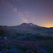 Mount St. Helens National Volcanic Park - Castle Rock, Washington by Will Shieh