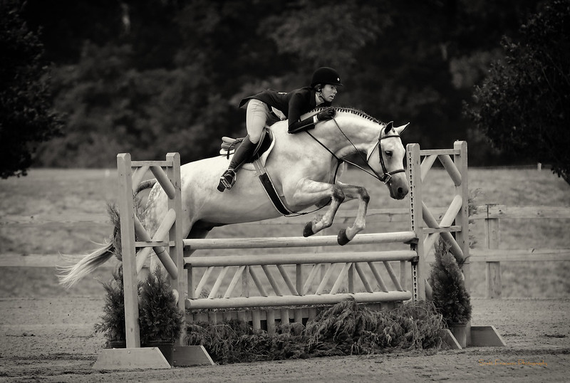 Middleburg Classic Horse Show 2013