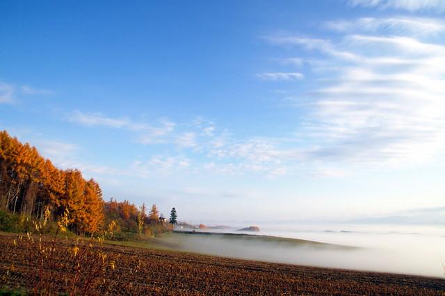 漂泊の朝霧6