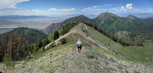 panorama utah pano trail alpine pinkhat nebo 089 nebolooproad 44qn nebobench trail089