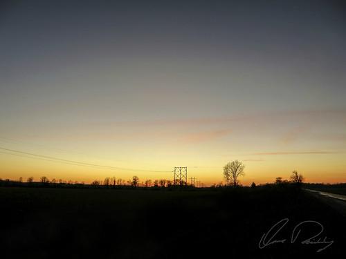 Vibrant Horizon