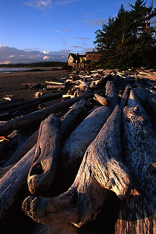 Kwisitis Visitor Centre, Long Beach, Tofino, Vancouver Island, British Columbia