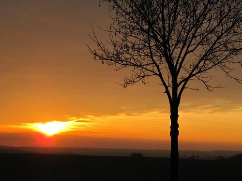 Naumburg - Sunset in late autumn