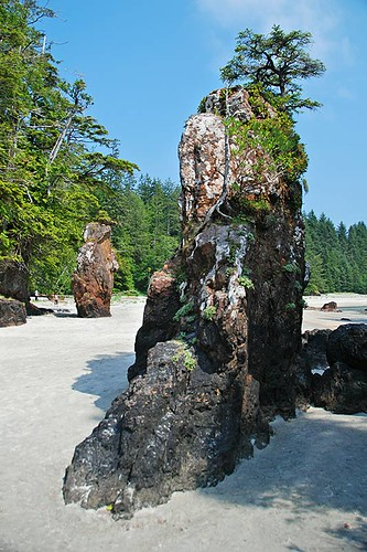 Sea Stacks at San Joseph Bay, Cape Scott Provincial Park, North Vancouver Island, British Columbia, Canada