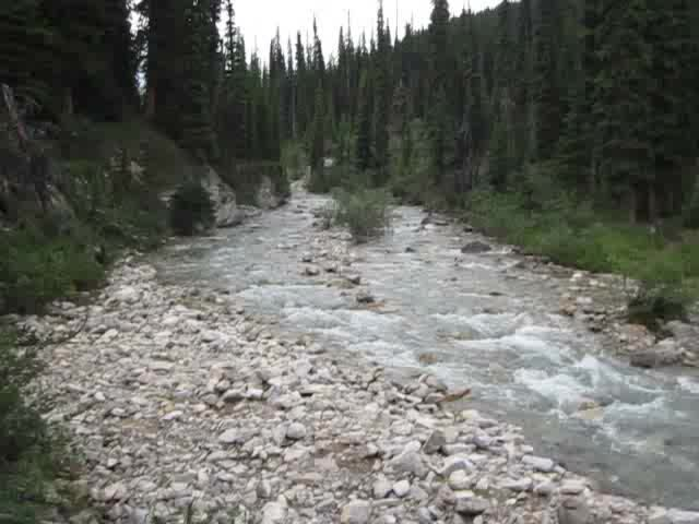 0690 Video of Johnston Creek where the Luellen Lake Trail crosses the wooden footbridge
