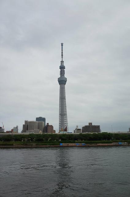 Tokyo Hotaru Light Symphony 2013-01