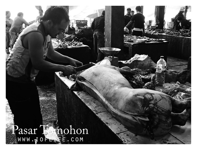 Memotong babi