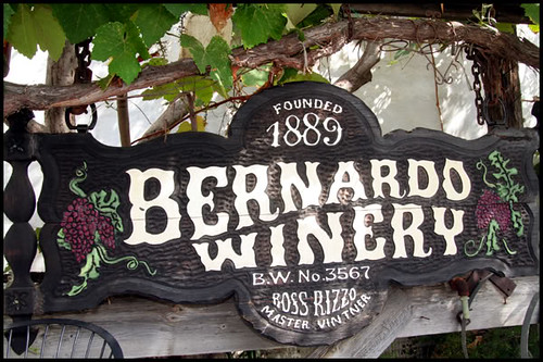 Bernardo Winery (9)