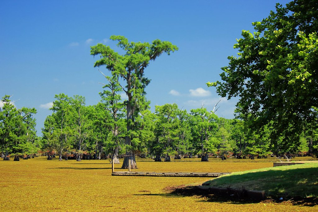 Indian Mound Louisiana Tripcarta