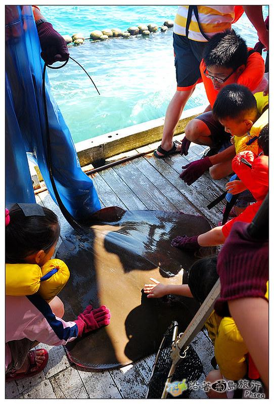 2013元貝休閒漁業_46