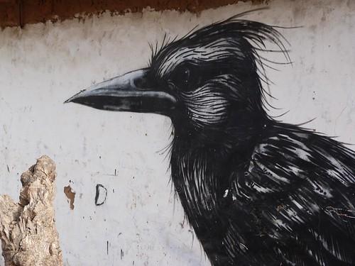 Pájaro pintado en una de las aldeas de Gambia