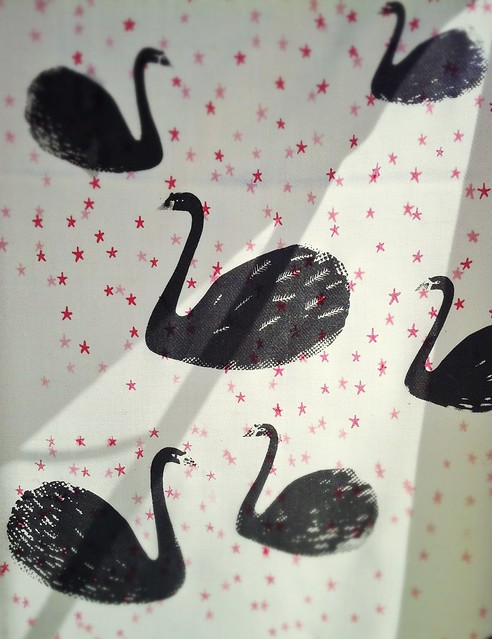 Swan print drying in the sunshine...