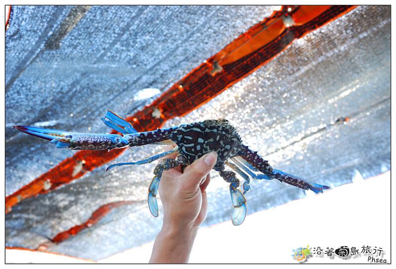 2013歐船長東海休閒漁業_10