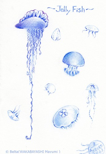 2013_08_04_jelly fish_01_s by blue_belta