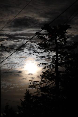 Dusk Sky and Moon Rise