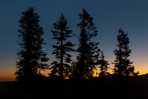 california trees sunset moon silhouette twilight venus unitedstates crescent pct marblemountain conjunction marblemountainwilderness fortjones