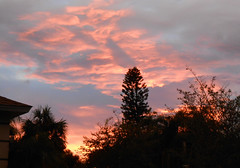 Sarasota - Sunset on Kingston Drive