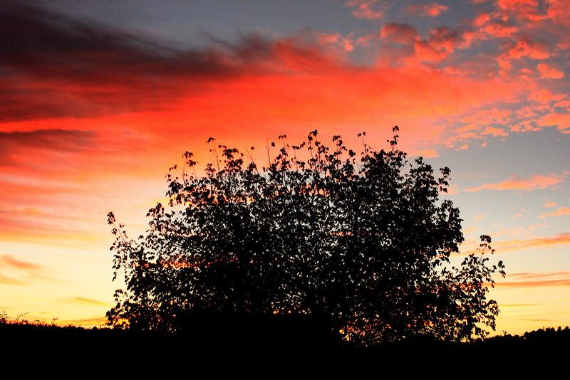 Crepúsculos de Outono