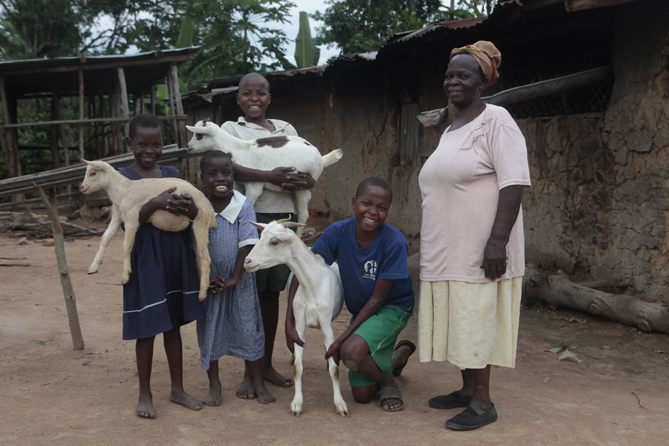 NACWOLA Mbale Women's Goat Project - HIV/AIDS  (21-0632-80)