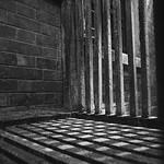 Checkered Shadow