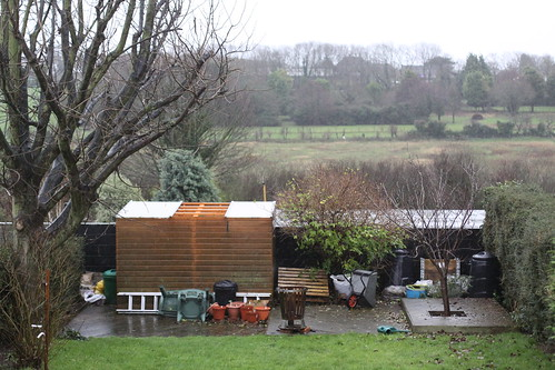 Anyone seen our shed roof?