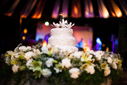 Him, Her and The Wedding Cake