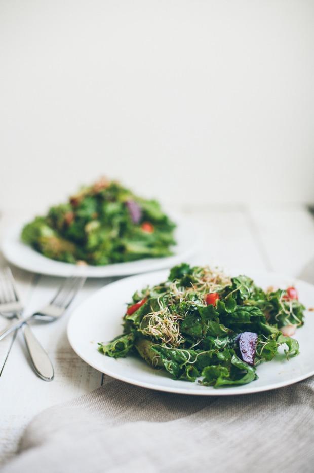 Leafy Sprouts Salad Sorghum Chili Vinaigrette