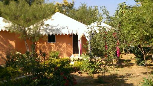 Tents At Achrol Bagh