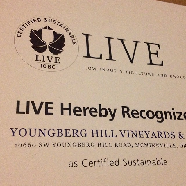 We are so thrilled to have been renewed for our Live certification.  Doing things right for our vineyard and environment is good for all of us! #youngberghill #orwine