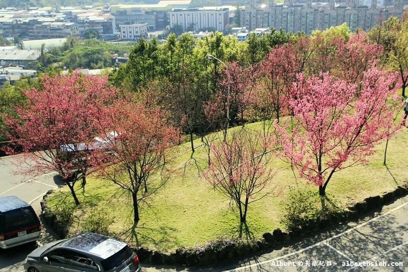 桃園龜山.壽山櫻花園