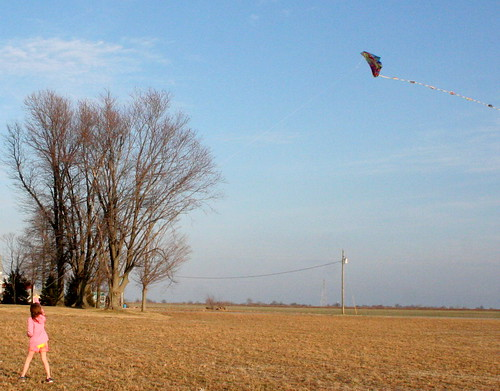 188/365 - Flying Kites