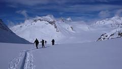 Wannenhorn (3906m), Schönbühlhorn (3854 M), Fiescher Gabelhorn 3876 m, Wyssnollen (3590m) ze schroniska Finsteraarhorn Hutte