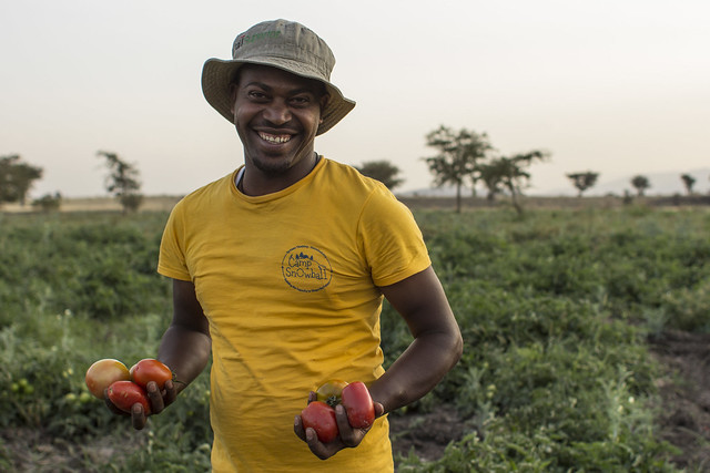 A farmer smiles and holds tomatoes