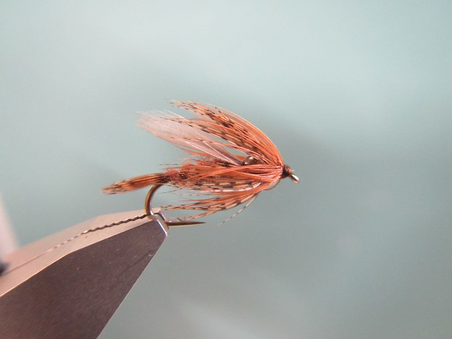 Silvey's Soft Serve march Brown Wet fly