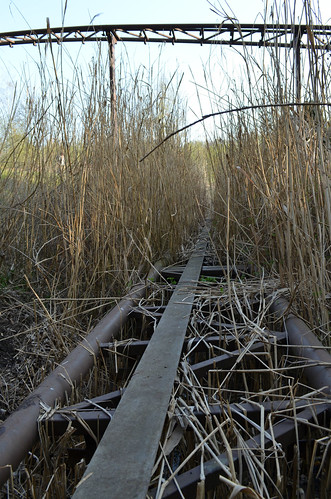 Spreepark Berlin Kulturpark abandoned amusement park_tall grass roller coaster tracks