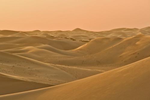 abudhabi 2sand dunes sunset sand camel