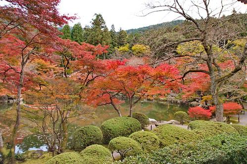 【写真】2012 紅葉 : 醍醐寺/2020-08-07/IMGP6858
