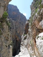 A Glimpse Down the Canyon