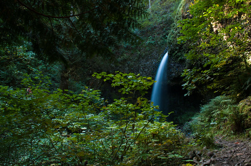 Portlandia, Part 3-3