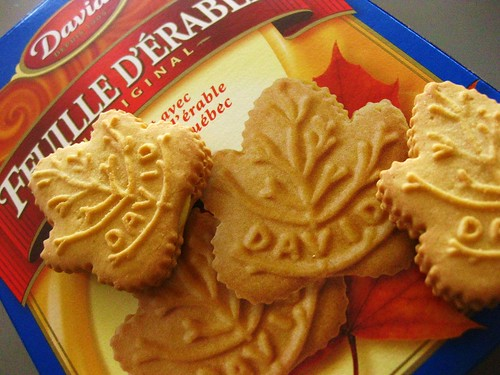 Maple Leaf Cookies // David by VeganBananas